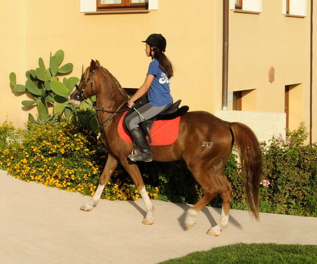 Hotel Alghero_Resort_Country_Hotel-Horse-Riding-02