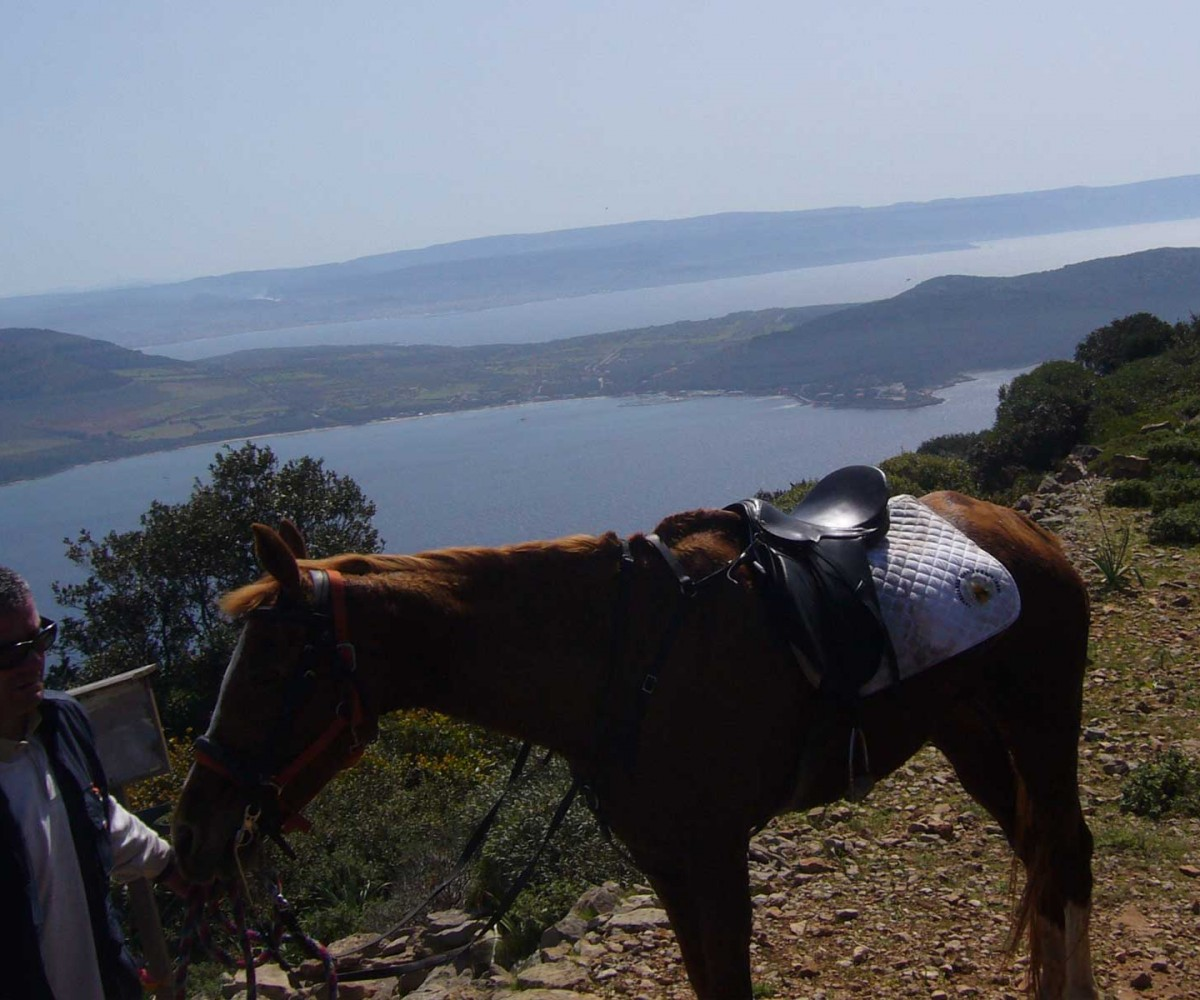 algheroresort-horseriding-005